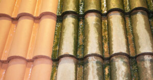 roof soft washing vs pressure washing 2020
